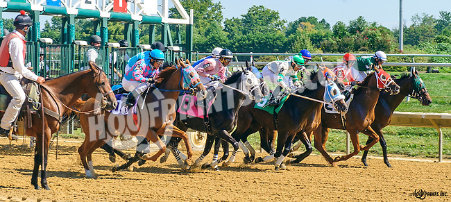 Midnight Man winning at Delaware Park on 9/22/16