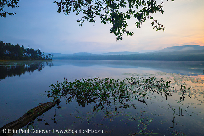 Lake Tarleton in Piermont, New Hampshire on a foggy morning summer day.