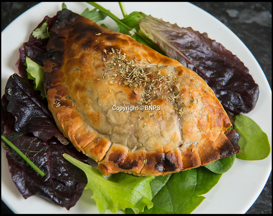 BNPS.co.uk (01202 558833)<br /> Pic: PhilYeomans/BNPS<br /> <br /> Cute, cuddley...tasty!<br /> <br /> Alpaca pastie anyone??.<br /> <br /> A Cornish farmer has come up with the latest in tasty treats...Alpaca pies. <br /> <br /> Alpaca breeder Emma Collison has started selling the unusual snacks from her farm on Bodmin moor in Cornwall. <br /> <br /> Alpaca, pasties, rolls and pies are now flying off the shelves as people develop a taste for the South American Camelid's lean, low fat &amp; low cholesterol meat. <br /> <br /> Emma believe's that to keep a healthy population of alpacas you must make them useful in as many ways as possible, so along with the pies and pasties she also sells duvets, pillows and fleeces made with the alpacas extremely fine wool.