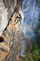 On the cliff, harvesting honey is a team-work between Then Mari and his good friend Mahalinjan who keeps the rope and manages the the basket full of honey. Then Mari dances on the ladder like a ropewalker and shouts his orders vehemently.