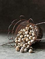 Gastronomie Générale: Coques - Stylisme : Valérie LHOMME