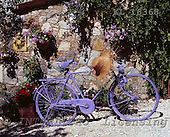 Interlitho, Alberto, FLOWERS, photos, bike, flowers, KL16368,#f# Blumen, Natur, flores, naturaleza