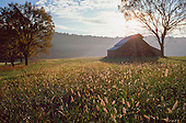 Barn in pasture at sunrise