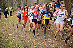 LOUISVILLE, KY - NOVEMBER 18: Runners compete during the Division I Men's Cross Country Championship held at E.P. Tom Sawyer Park on November 18, 2017 in Louisville, Kentucky. (Photo by Tim Nwachukwu/NCAA Photos via Getty Images)