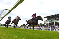 Winner of The Dee Wilks Against The Odds Confined Novice Stakes (Div 1) Power of Darkness ridden by Hayley Turner and trained by Marcus Tregoning during Afternoon Racing at Salisbury Racecourse on 12th June 2018