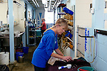 Employees and volunteers have taken on the task of caring for more than 100 rescued sea lion pups at the Pacific Marine Mammal Center in Laguna Beach, California February 25, 2015. Director of Animal Care Michele Hunter readies for a feeding.