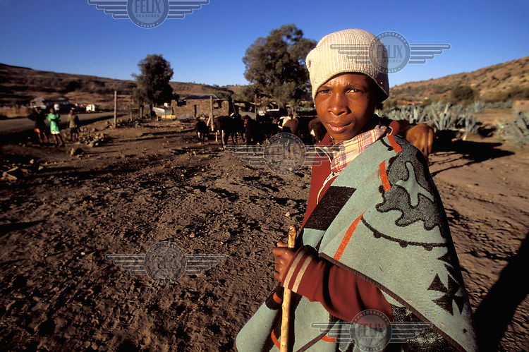 © Giacomo Pirozzi / Panos Pictures..LESOTHO..Young cattle herder.