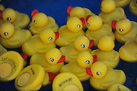 NWA Democrat-Gazette/ANDY SHUPE<br /> Ducks float Thursday, Sept. 3, 2015, during the Washington County Fair at the county fairgrounds in Fayetteville.