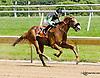 Jarrod's Commando winning at Delaware Park racetrack on 6/18/14