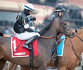 Gazelle Stakes - Lewis Bay