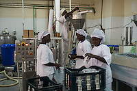 Sisters of the church Notredame de Koubri producing yoghurt with milk powder