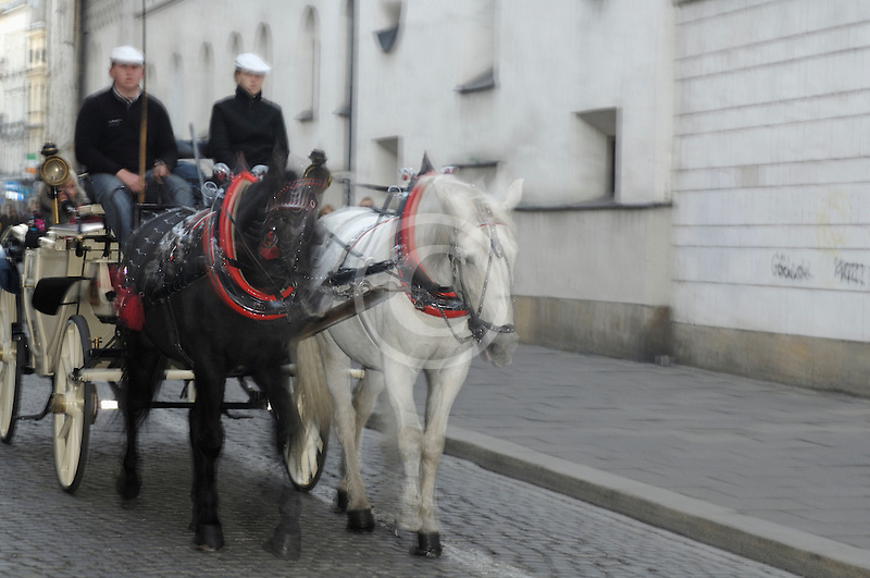 Poland, Krakow, Horse-drawn carriage, Old Town