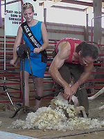Christine Linder, the then Alice in Dairyland, assists sheep-shearer David Kier with a hand driven clipper at the Wisconsin Wool and Sheep Expo in Jefferson, Wisconsin.
