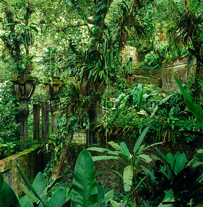 The encroaching jungle swallows up the skeletal structures in Edward James surreal playground