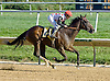 Onepointhreekarats winning at Delaware Park on 9/24/12