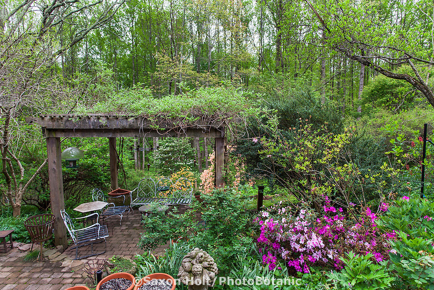 Wooden trellis pergola overtop stepping stone patio garden room in naturalistic woodland  garden, Boninti Garden, Virginia