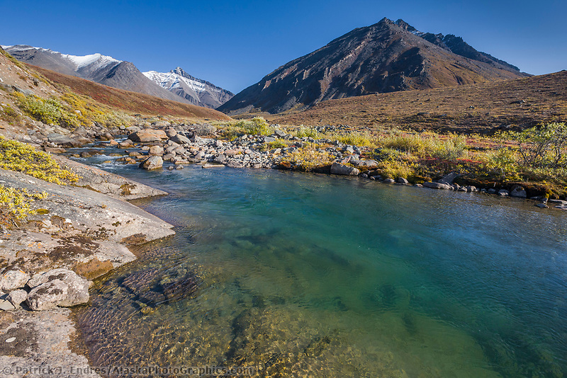 Autumn colors decorate the tundra, mountain stream, Brooks Range mountains, arctic, Alaska.