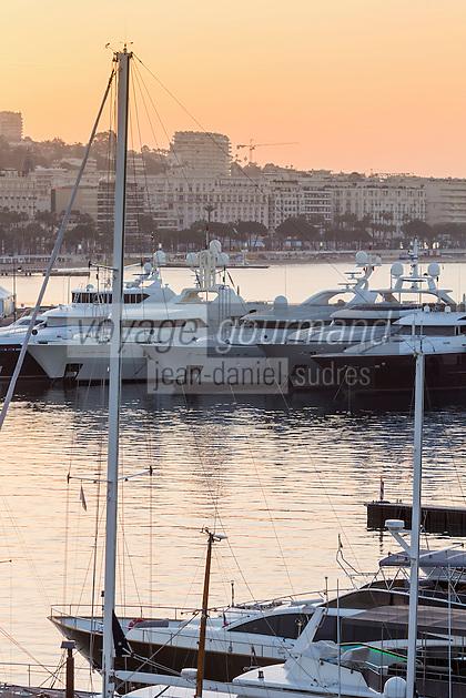Europe/France/Provence-Alpes-Côte d'Azur/Alpes-Maritimes/Cannes:  A l'aube les Yacht au Vieux Port et en fond La Croisette  // Europe, France, Provence-Alpes-Côte d'Azur, Alpes-Maritimes, Cannes:   At dawn the Yacht to the Old Port and La Croisette background