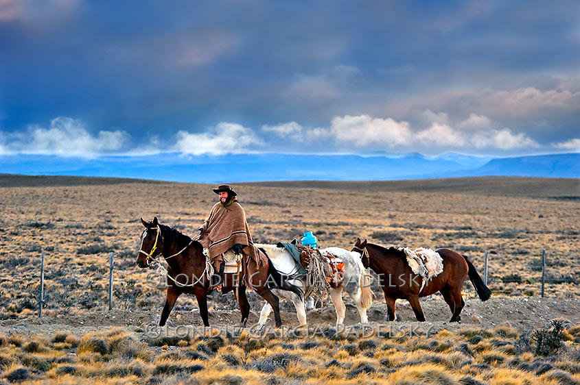 Argentine Cowboy riding horseback and leading pack horses on a 1200 mile, 6 month journey across Argentina