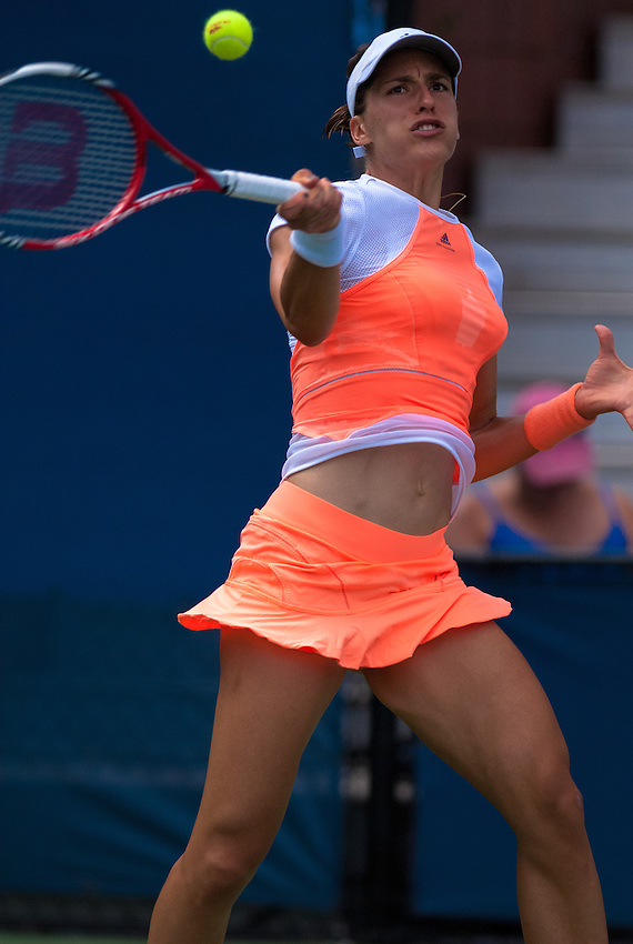 NEW YORK, NY - August 27, 2013: Sabine Lisicki (GER) during her first round single's match at the 2013 US Open in New York, NY on Monday, August 26, 2013.