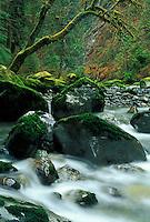 The Boulder River flows through moss covered boulders, Darrington, Washington
