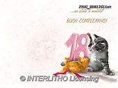 Marcello, REALISTIC ANIMALS, REALISTISCHE TIERE, ANIMALES REALISTICOS, paintings+++++,ITMCEDH1361INT,#A#, EVERYDAY ,cat,cats