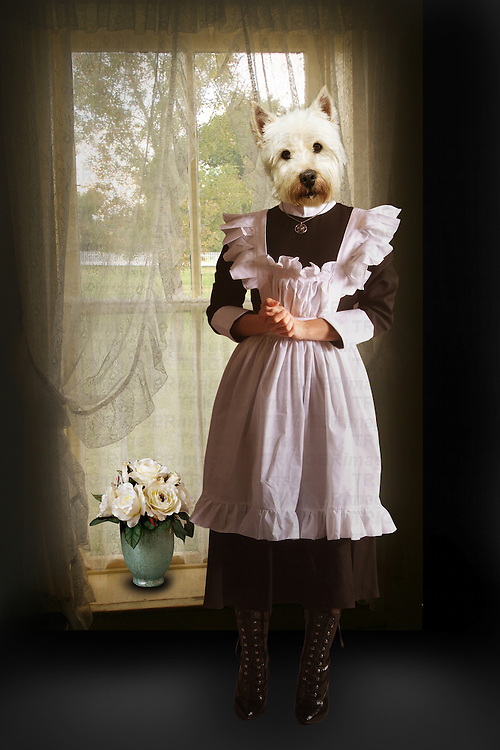 surreal dog dressed as a maid
