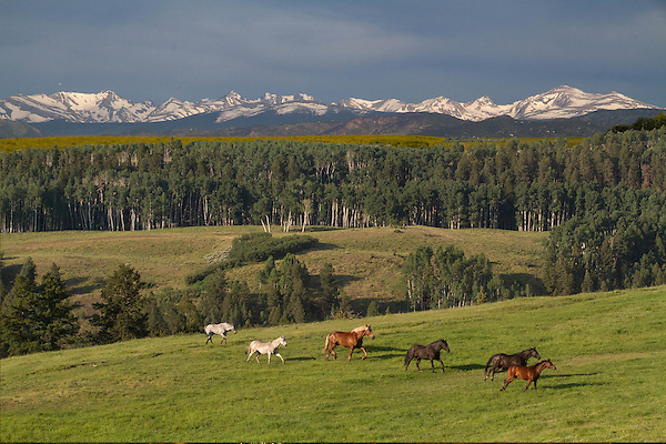 Photoshop. Horses and Rocky Mountains combined, Colorado. .  John leads private photo tours in Boulder and throughout Colorado. Year-round. .  John leads private photo tours in Boulder and throughout Colorado. Year-round Colorado photo tours.