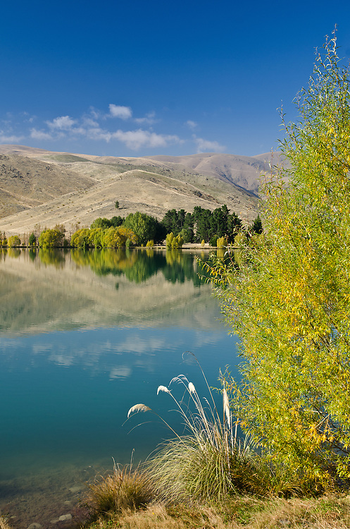 Autumn mirror reflection in a  pond near Twizel, South Island, New Zealand - stock photo, canvas, fine art print
