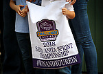 ARCADIA, CA: October 06: Breeders Cup win and you're Santa Anita Sprint Championship at Santa Anita Park on October 06, 2018 in Arcadia, California (Photo by Chris Crestik/Eclipse Sportswire)