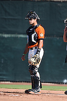 San Francisco Giants catcher Aramis Garcia (6) during an Instructional League game against the Oakland Athletics on October 13, 2014 at Giants Baseball Complex in Scottsdale, Arizona.  (Mike Janes/Four Seam Images)