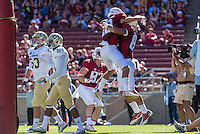 STANFORD, CA - AUGUST 30, 2014:  Austin Hooper celebrates with teammates during Stanford's game against UC Davis. The Cardinal defeated the Aggies 45-0.