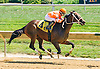 Rock On Wye winning at Delaware Park on 8/27/16