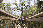 Idrissa Abdou, a tourist from Maryland, crosses the canopy walkway leading to the tower at Myakka River State Park in Florida.