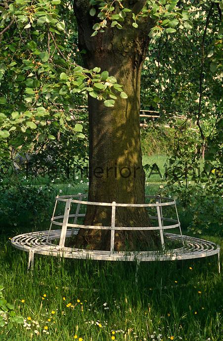 A wrought-iron garden seat encircles the trunk of a tree in this informal garden