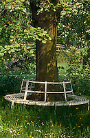 A wrought-iron garden seat encircles the trunk of a tree in this informal garden