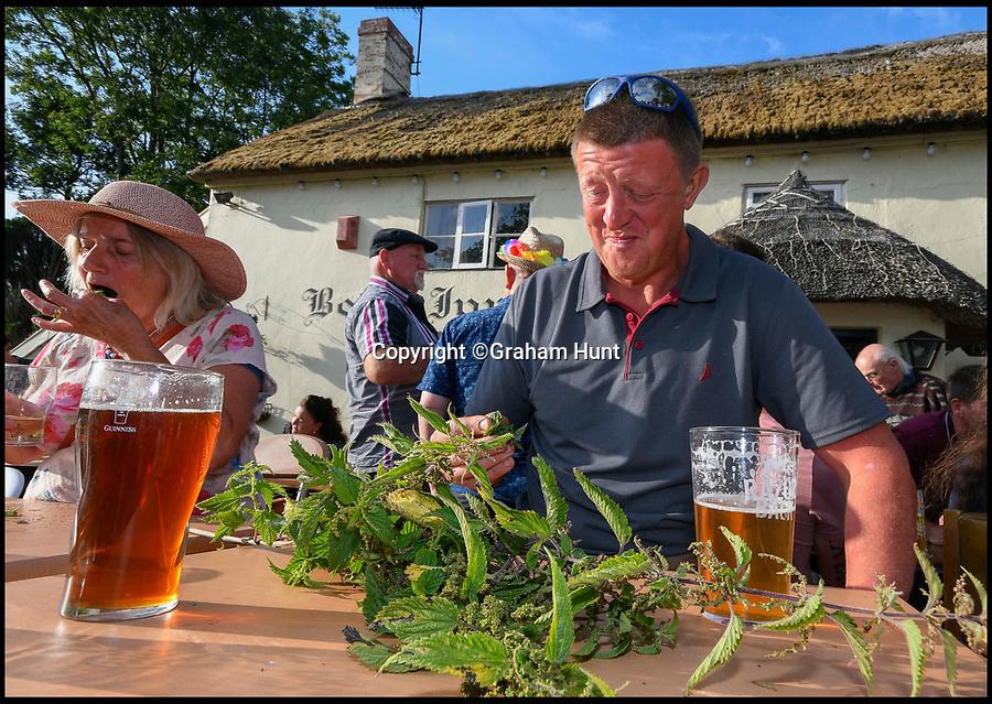 BNPS.co.uk (01202 558833)<br /> Pic: Graham Hunt/BNPS<br /> <br /> Dave Lenander struggling to eat the neattles as the 1 hour mark approaches in the World Nettle Eating Championships at the Bottle Inn, Marshwood, Dorset, UK.
