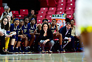 College Park, MD - NOV 29, 2017: Georgia Tech Yellow Jackets head coach MaChelle Joseph on the sideline during ACC/Big Ten Challenge game between Gerogia Tech and the No. 7 ranked Maryland Terrapins. Maryland defeated The Yellow Jackets 67-54 at the XFINITY Center in College Park, MD.  (Photo by Phil Peters/Media Images International)