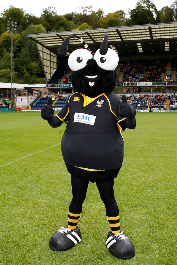 Photo: Richard Lane/Richard Lane Photography. London Wasps v Leicester Tigers. 11/09/2011. Wasps' mascot, Sting.