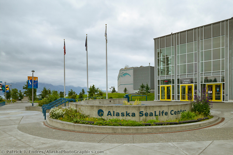 Seward Sea Life Center, Seward Alaska, Kenai Peninsula, Alaska