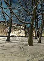 Winter Scene - Prospect Park in the Snow at Night Looking Towards Residental Buildings on Prospect Park West, Brooklyn, New York City, New York State, USA