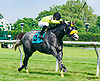 Smokinwatchstopper winning at Delaware Park on 6/17/17