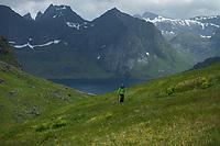 Female hiker hiking into hidden mountain valley above Kirkefjord, Moskenesøy, Lofoten Islands, Norway