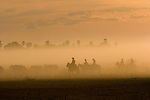 Cowboys are sillhouetted in dust their horses have kicked up on a ride in Fazenda Rio Negro, Brazil.