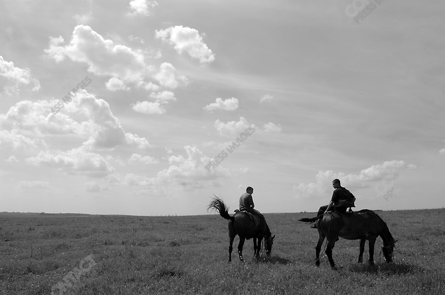 A cowboy tended a herd of milk cows on the Agro-Invest holding of over 20,000 hectares near the town of Stanovoye, Lipetsk region. Russia, July 15, 2008.
