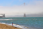 San FranciscoScapes