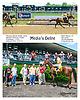 Media's Delite winning at Delaware Park  on 5/25/15