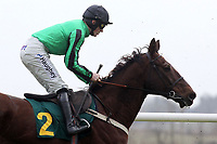 Seedsman ridden by Sam Twiston-Davies in action in the European Breeders Fund National Hunt Novices Hurdle