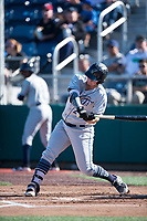 Tri-City Dust Devils first baseman Justin Paulsen (24) swings at a pitch during a Northwest League game against the Everett AquaSox at Everett Memorial Stadium on September 3, 2018 in Everett, Washington. The Everett AquaSox defeated the Tri-City Dust Devils by a score of 8-3. (Zachary Lucy/Four Seam Images)