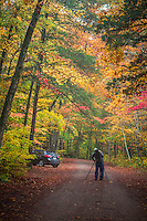 Fall in the Haw Creek Recreation Area in the Ozark National Forest in Arkansas.
